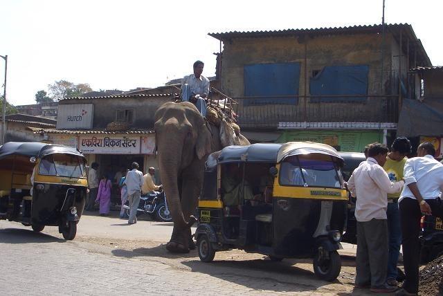 Elefante al lado de un taxi rikshaw. [Foto Ariel Lichtig]